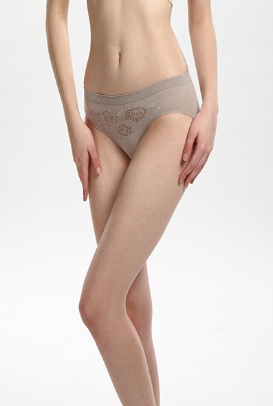 Shaping Panties Low Waisted Brief